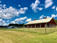 Beautiful 57 Ac Ready For Horses : Smithdale : Amite County : Mississippi