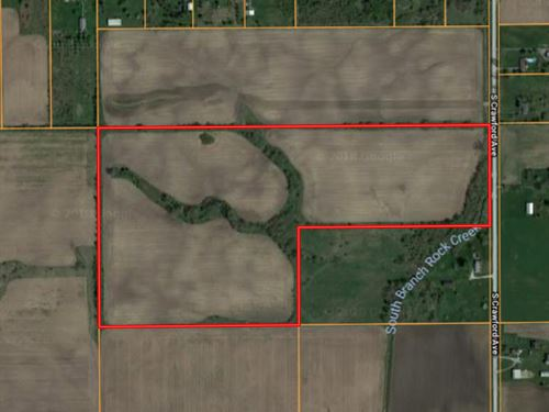 Peotone 60 Acres : Peotone : Will County : Illinois