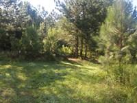 Unrestricted Land In Pittsboro, Nc : Pittsboro : Chatham County : North Carolina