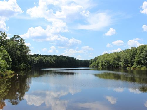 4 Lakes Totaling 30+ Acres : Buena Vista : Marion County : Georgia