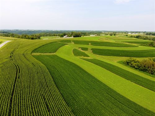 Farmland-Hunting-Investment Parcel : Prairie Du Chien : Crawford County : Wisconsin
