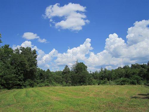 The Good Life : Dillwyn : Buckingham County : Virginia