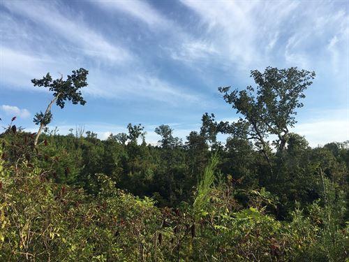 Historic Mountain Acreage : Rockmart : Polk County : Georgia