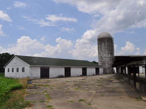 160+/- Acre Preserved Farm : Bordentown : Burlington County : New Jersey