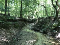 Brown Tract : Lexington : Oglethorpe County : Georgia