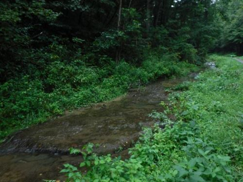 33.21 Ac, Creek, Hunters Paradise : Whitleyville : Jackson County : Tennessee