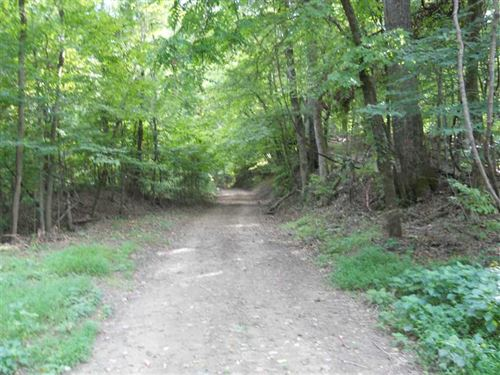 92 Acre Hunting Tract in The : Rodney : Jefferson County : Mississippi