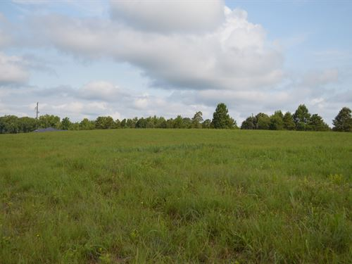 Two Adjoining 5.3 Acre Tracts : Campobello : Spartanburg County : South Carolina