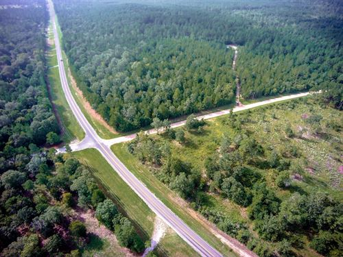 10.40 Acres In San Jacinto County : Point Blank : San Jacinto County : Texas