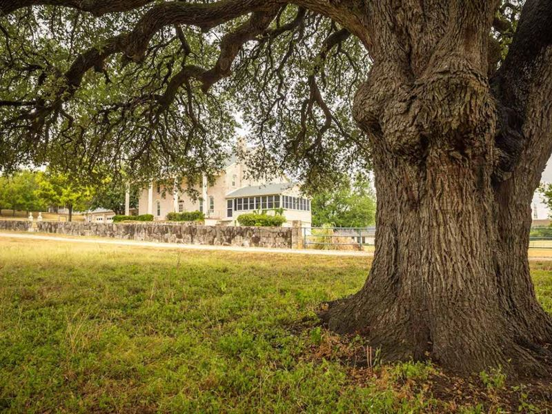 The Ranch at Squaw Valley : Glen Rose : Somervell County : Texas