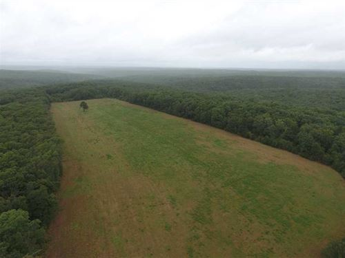 160 Acre Farm For Sale in Texas Co : Roby : Texas County : Missouri