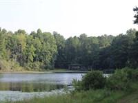 Big Bucks, Great Fishing, Ducks : Oglethorpe : Macon County : Georgia