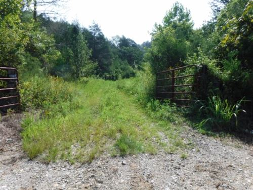 34Ac Cumberland River Frontage/View : Burkesville : Cumberland County : Kentucky