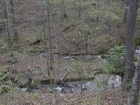 Majestic Stream Getaway : Dunlap : Sequatchie County : Tennessee