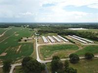 Homestead Farm-Morgan County, Al : Danville : Morgan County : Alabama