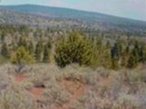 Recreation Property : Bonanza : Klamath County : Oregon