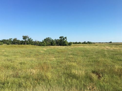 Dawes County Farm, Grass, And Home : Chadron : Dawes County : Nebraska