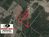 22 Acres of Hunting And Developmen : Lake City : Florence County : South Carolina