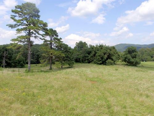 Sealed Bid Auction : Barboursville : Albemarle County : Virginia