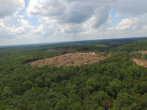 Over 4,000 Acres : Waynesboro : Wayne County : Tennessee