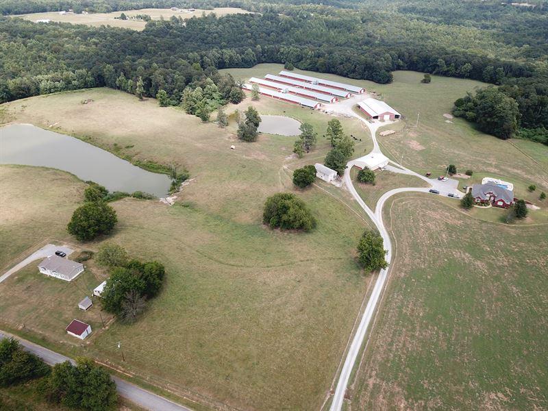 Poultry & Cattle Farm Near Cullman : Vinemont : Cullman County : Alabama