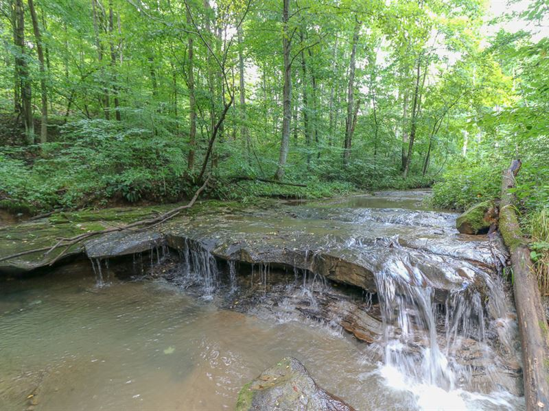 Ellis Rd, 62 Acres : Laurelville : Hocking County : Ohio