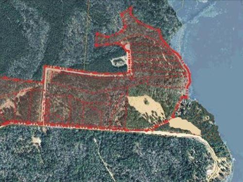 Lake Talquin Lakefront, Reynolds Rd : Quincy : Gadsden County : Florida