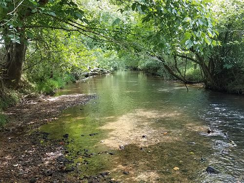 Nances Creek Farm, 37+/- Acres : Piedmont : Calhoun County : Alabama