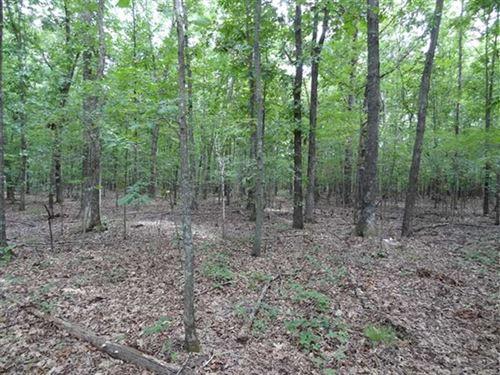 40 Acres Near Hurricane Lake : Bald Knob : White County : Arkansas