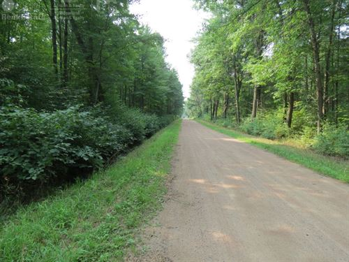 Parcel Great For Hunting : Stevens Point : Portage County : Wisconsin