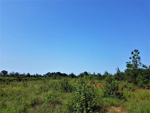 Graden Road Tract : Ware Shoals : Laurens County : South Carolina