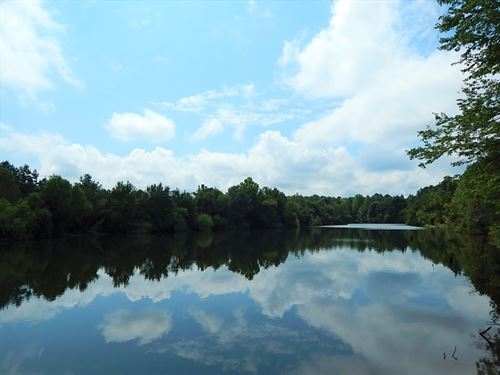 Hunting Tract With 3 Ponds : Jeffersonville : Wilkinson County : Georgia