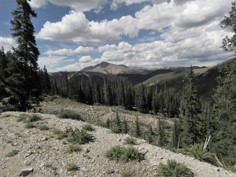 2496780 Turn Of The Century Mining : Buena Vista : Chaffee County : Colorado