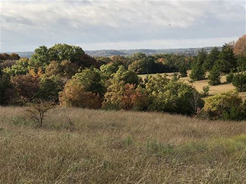 Prime Hunting And Cattle Land For : Muenster : Cooke County : Texas
