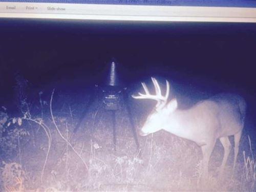 315 Acre Duck/Deer Hunting Pro : Woodson : Pulaski County : Arkansas