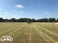 10 Acres Mabank, Great Building Sit : Mabank : Kaufman County : Texas