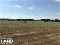 10 Acres Mabank, Improved Pasture : Mabank : Kaufman County : Texas
