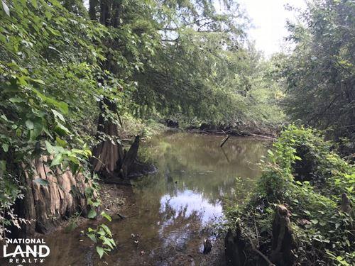 32 Acres Deer & Duck Hunting on : Trenton : Phillips County : Arkansas