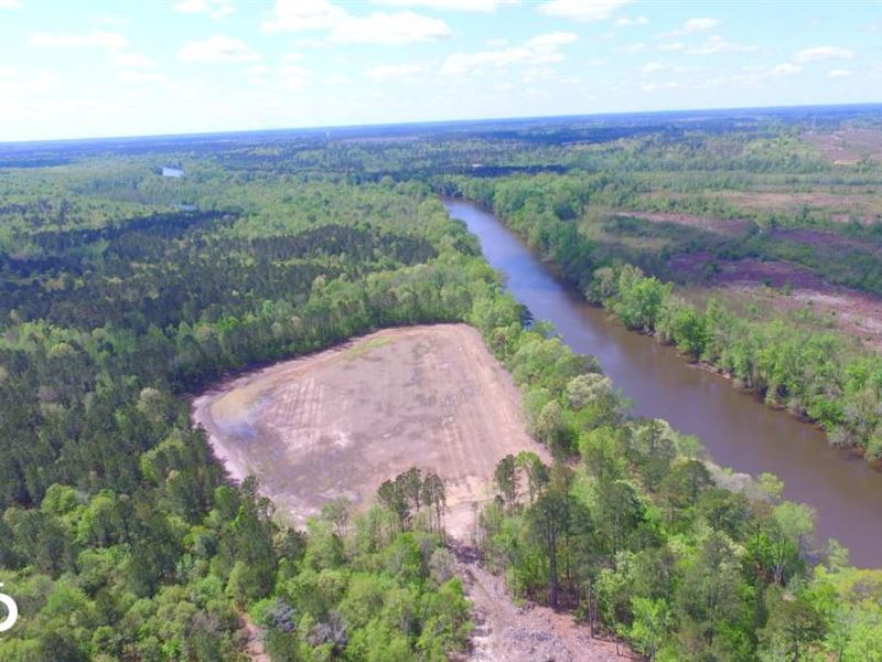 Cape Fear River Duck Impoundment : Kelly : Bladen County : North Carolina