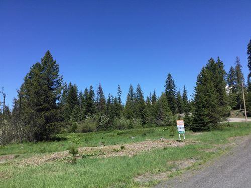 Acreage Near Orofino, Idaho : Orofino : Clearwater County : Idaho