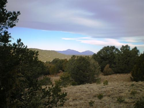 Buildable Mountain Land Trinidad : Trinidad : Las Animas County : Colorado