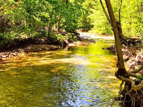 Sharp County Arkansas Hunting : Sitka : Sharp County : Arkansas