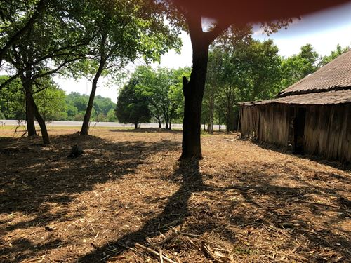 47 Pristine Acres Just West Natchez : Franklin : Davidson County : Tennessee
