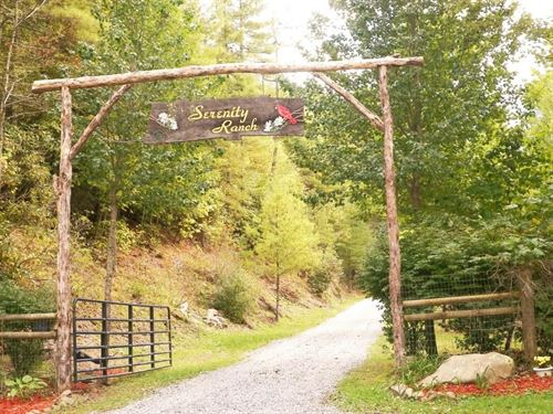 SW Virginia Privacy, Seclusion : Sugar Grove : Smyth County : Virginia