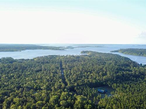 7.43 Acres Lake Sam Rayburn Land : Lufkin : Angelina County : Texas