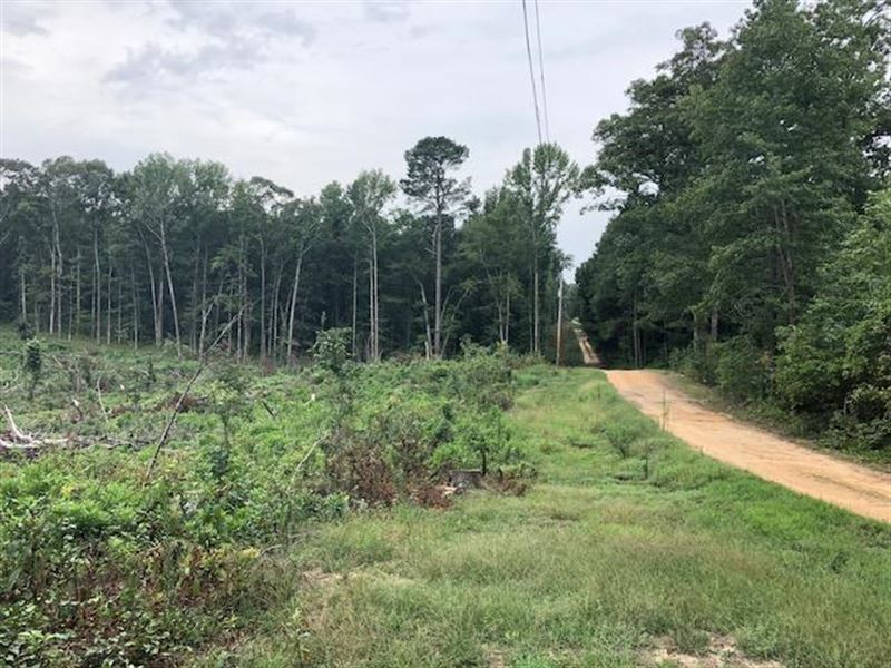 13.34 Acres In Mabelvale, Arkansas : Mabelvale : Saline County : Arkansas