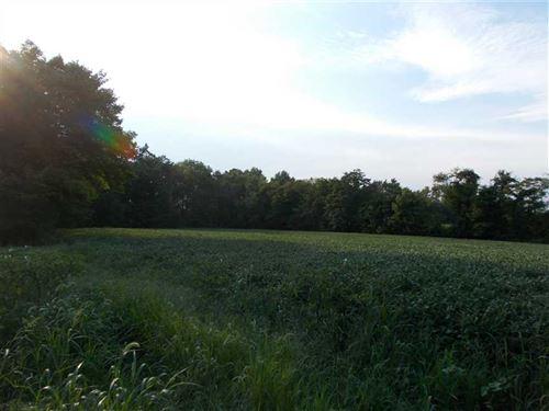 North Sunflower Place Lot 3 : West Terre Haute : Vigo County : Indiana