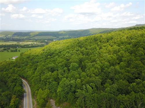 Price Reduced, 88 Acres of Ti : Marshall : Searcy County : Arkansas