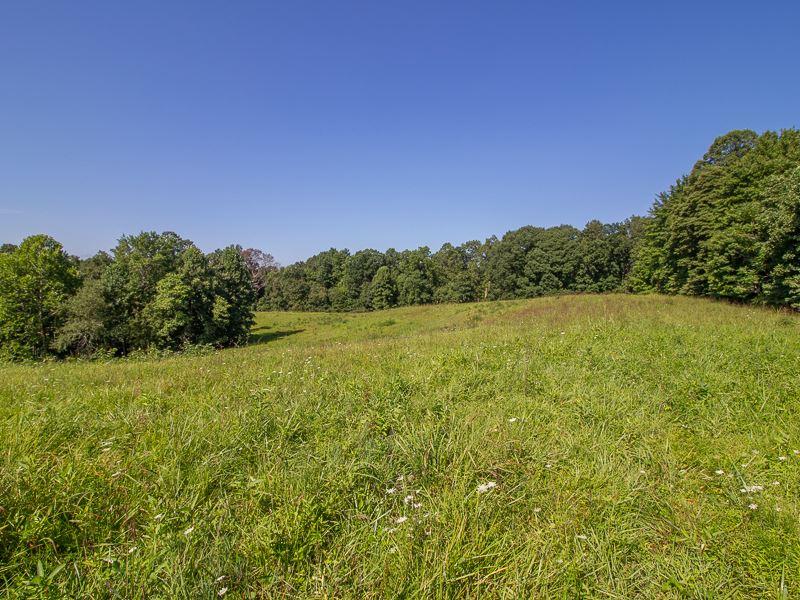 Stout Rd, 50 Acres : Logan : Hocking County : Ohio