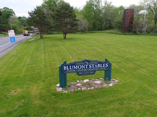 Luxury Horse Facility By Racetrac : Farmington : Ontario County : New York